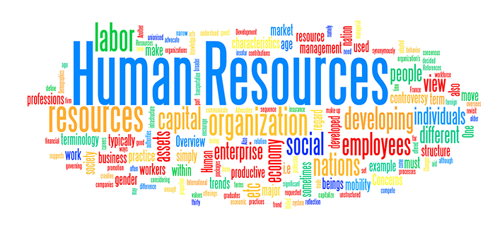 THE HUMAN RESOURCE FUNCTION OF THE MFI - S  Silverman